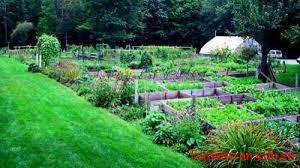 Tả mảnh vườn