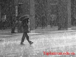 Tả một trận mưa rào
