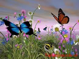 Em hãy kể lai cuộc gặp gỡ của ong và bướm