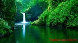 Tình yêu thiên nhiên trong thơ Nguyễn Trãi qua các bài học đã học