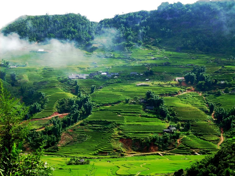 Em hãy nêu cảm nhận về bài thơ Việt Bắc của nhà thơ Tố Hữu rất hay