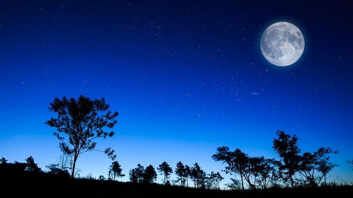 Em hãy nêu cảm nghĩ về bài thơ Cảnh khuya của Hồ Chí Minh rất hay
