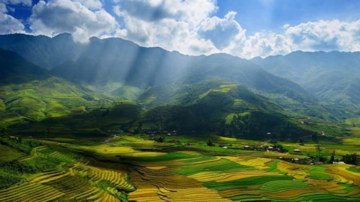 Phân tích 8 câu đầu bài thơ Việt Bắc của nhà thơ Tố Hữu rất hay