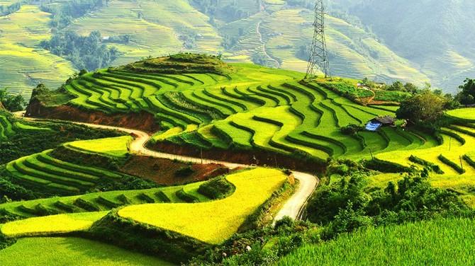 Phân tích bài thơ Đất Nước của tác giả Nguyễn Khoa Điềm rất hay